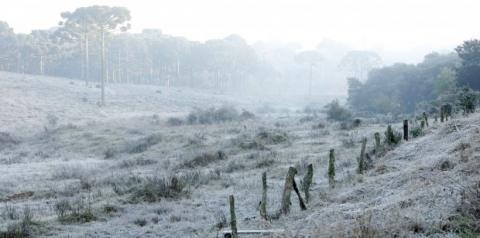Geada é registrada em 11 cidades de Mato Grosso do Sul