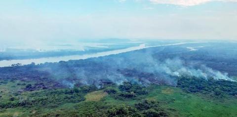 Governo decreta emergência por risco de incêndios florestais no Pantanal