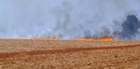 Colheitadeira pega fogo e incêndio atinge canavial