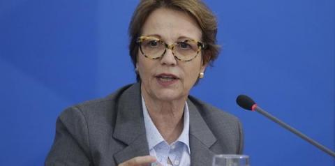 Eleições 2022: Tereza Cristina diz que prefere ser candidata ao Senado