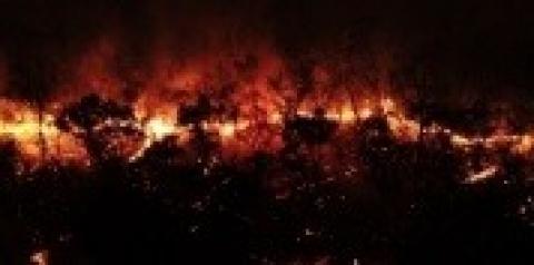 """Alcinópolis decreta """"Situação de Emergência"""" por iminente risco de desastres de incêndios florestais"""