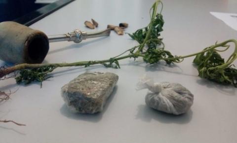 Ao abordarem menores, Polícia Militar de Alcinópolis encontra pé de maconha e porções de drogas