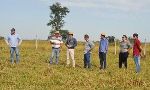Com o apoio da Fundação Chapadão, Alcinópolis dá início a processo de plantio experimental de soja