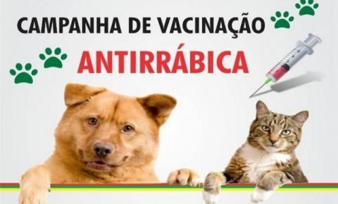 Alcinópolis está realizando Campanha Antirrábica