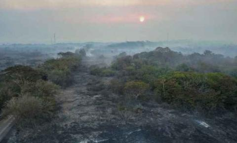 Focos de incêndio diminuem, mas área queimada chega a 173 mil hectares no Pantanal