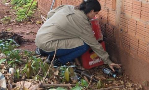 Mulher de 67 anos é a quarta vítima da dengue do ano em Mato Grosso do Sul Caso foi registrado em Cassilândia.