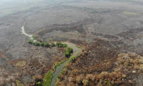 Provas indicam que fazendeiros provocaram queimadas no Pantanal de MS, aponta PF