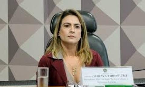 Figueirão recebe em 90 dias ônibus escolar adquirido com emenda de Soraya Thronicke