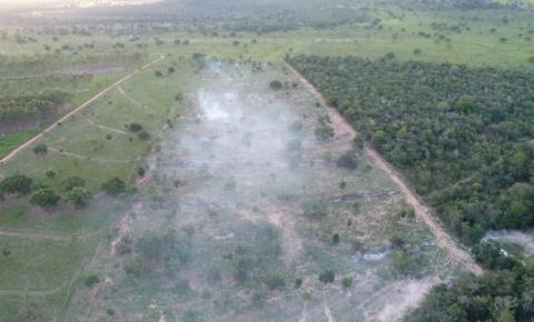 PMA autua dono de sítio por incêndio em vegetação nativa em Coxim