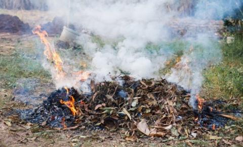 Moradora é flagrada e multada por incêndio em folhagem