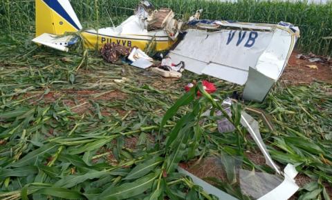 Dois morrem após avião cair em plantação na divisa entre São Gabriel e Bandeirantes