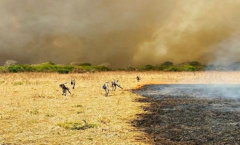 Combate aos incêndios no Pantanal mobiliza 510 homens e seis aeronaves: incidência de focos é menor em três anos críticos
