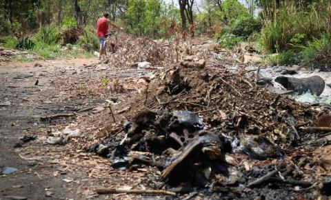 Polícia acredita que animais carbonizados foram descartados em terrenos