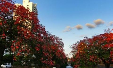 Última semana de setembro terá pancadas de chuva com destaque para calor e tempo seco
