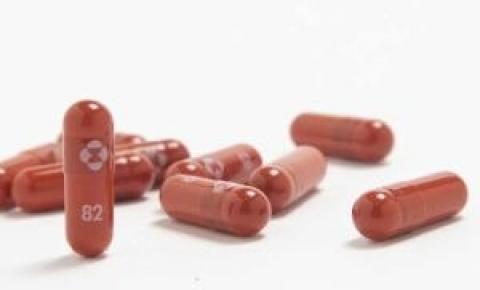 Farmacêutica afirma que comprimido diminuiu mortes por Covid-19