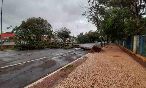 Mato Grosso do Sul segue com alerta de fortes tempestades neste sábado