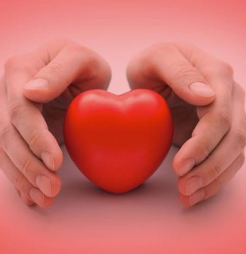 Setembro Vermelho relembra o quanto as doenças cardíacas podem ser letais; veja como se prevenir