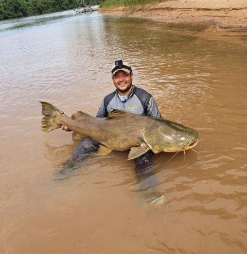 Médico fisga jaú de 1,70m no rio Rio Taquari em Coxim