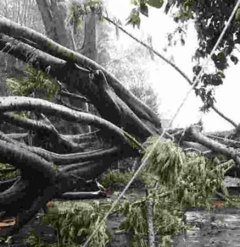 Apagão: Pelo menos 13 bairros continuam sem energia em Campo Grande nesta segunda